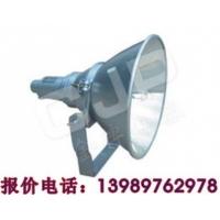 NTC9200 防震型超强投光灯 金牌电器 CNT9150