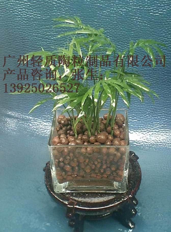 广州陶粒 质量优良