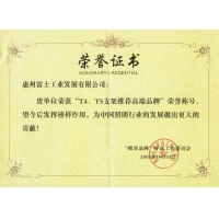 T4,T5支架推薦高端品牌榮譽證書