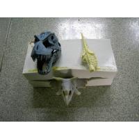 手板硅胶、恐龙手板模具胶