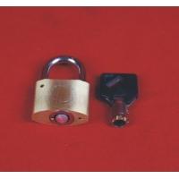 电表箱专用锁 梅花弧铜锁