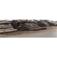 合肥木材出口