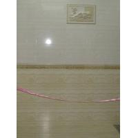 景德龙陶瓷样板砖