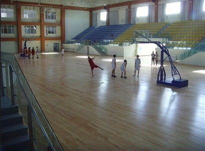 广州番禺绿欧PVC塑胶运动地板