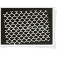 现货销售白色纯料塑料平网|养殖网|万能网|塑料网|养鸡网