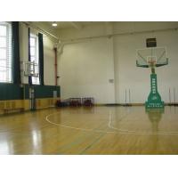 专业篮球地胶