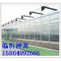 《临沂《阳光板》阳光板有限公司》供应阳光板耐力板