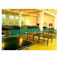 球场专用塑胶地板/网球场地板/乒乓球地胶铺设