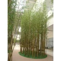 江南园艺仿真竹子,仿真椰子树