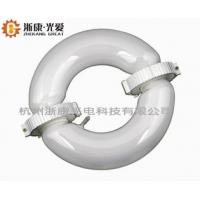 专业生产350W环形无极灯-LED-节能灯-浙康光电