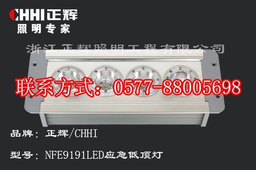 NFE9191 LED應急低頂燈,防水防塵LED低頂燈,車廂
