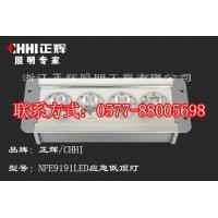 NFE9191 LED应急低顶灯,防水防尘LED低顶灯,车厢
