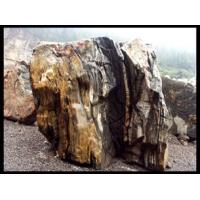 景观园林石 三峡石 园林石 造景石