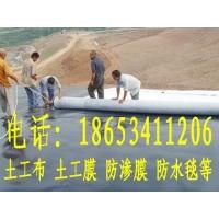 山东膨润土覆膜防水毯厂家