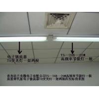 节能灯,T5节能灯,T5转T8节能灯,直型荧光灯管