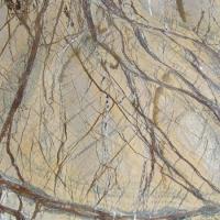 嘉航石材-热带雨林啡