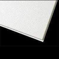 南京雷竞技|唯一授权天花板-阿姆斯壮雷竞技|唯一授权天花板-防菌板
