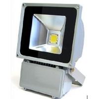 100W大功率LED泛光灯/LED户外照明灯具