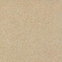 中鸿陶瓷耐磨砖系列NM602(广东佛山中鸿陶瓷)