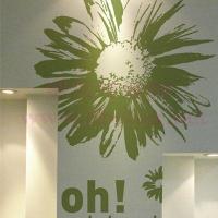 写真菊花 抽象墙贴 植物墙贴 墙贴报价
