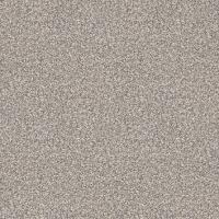 金佛陶瓷-507 考拉灰