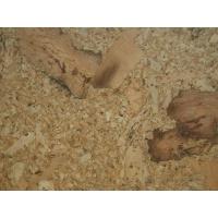 软木地板,软木锁扣地板,粘贴式软木地板