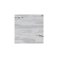 先威龙陶瓷-时尚地材(时尚登陆普ct415)