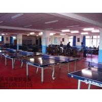 体育塑胶地板,lg塑胶地板,防静电地板