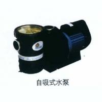 南京泳池设备-自吸式水泵