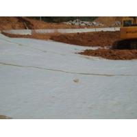 山东烟台膨润土防水毯