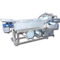 双龙食品机械—蘑菇清洗机