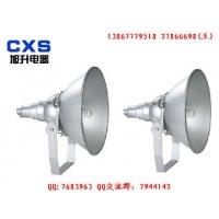 C-NTC9210防震投光灯 价格