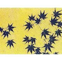 盐湖硅藻泥壁材