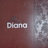 南京墙纸-壁纸-多正墙纸-产品 狄安娜