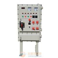 温州BQM(D)-T系列防爆非标配电箱
