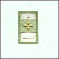 索尼娅的伯爵瓷砖