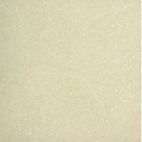 远方陶瓷-春江花月系列 APS8205