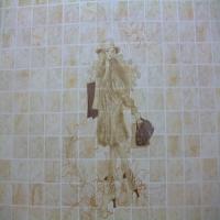 内墙砖系列
