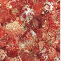 成都拉斐尔瓷砖微晶石系列8808