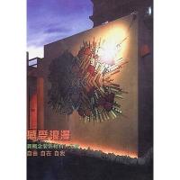 银信建材-墙饰艺术英赛斯陶砖