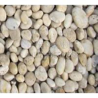 河南绿化鹅卵石