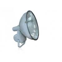 CZT6900防水防尘防震投光灯,三防投光灯