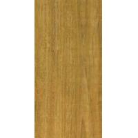 SV701黄金海栎木