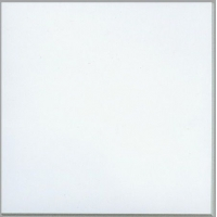 白色耐磨砖