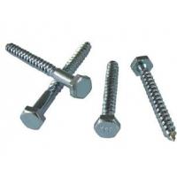 上海不锈钢木螺钉生产厂家 木螺钉价格 木螺钉标准