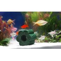 深圳鱼缸净水石
