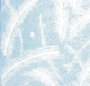 成都斯图美液体壁纸漆涂料-滚花系列809