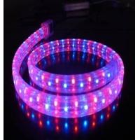 LED彩虹管、灯带、彩虹灯带、软管