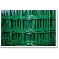 生产定做各种规格荷兰网,PVC涂塑荷兰网,浸塑电焊网,