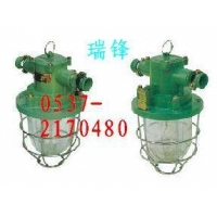 DGG-60/127B矿用隔爆型白炽灯